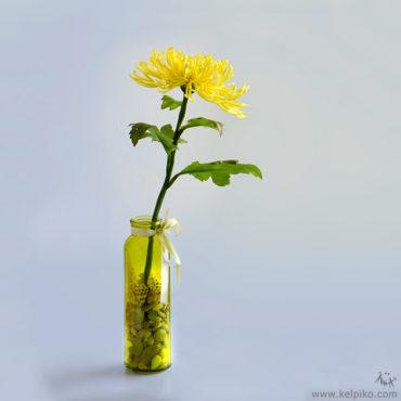 Flower arrangements   Anna Kelpiko